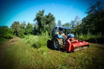 Selvicoltura e Ambiente